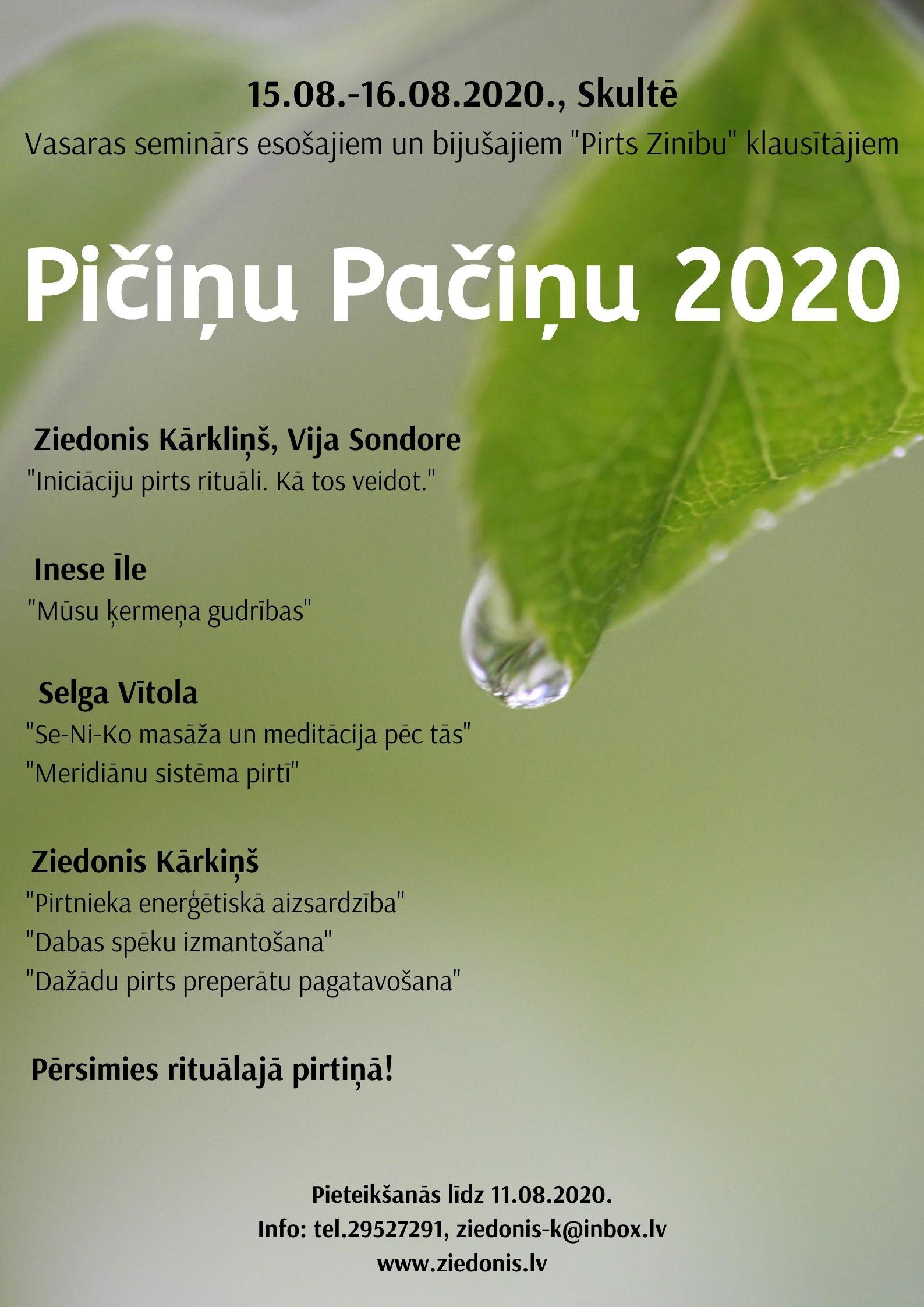 PicinuPacinu2020_programma